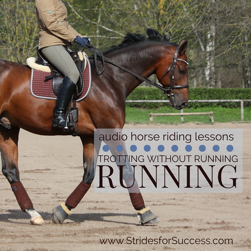 Trotting Without Running
