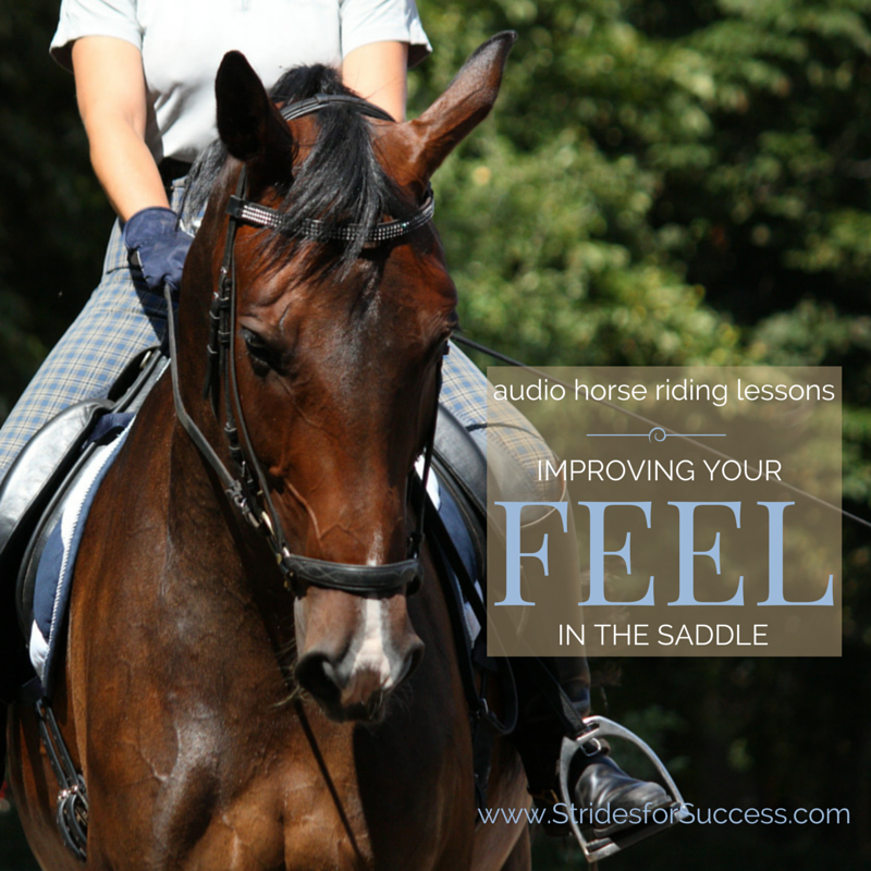 Improving Your Feel in the Saddle