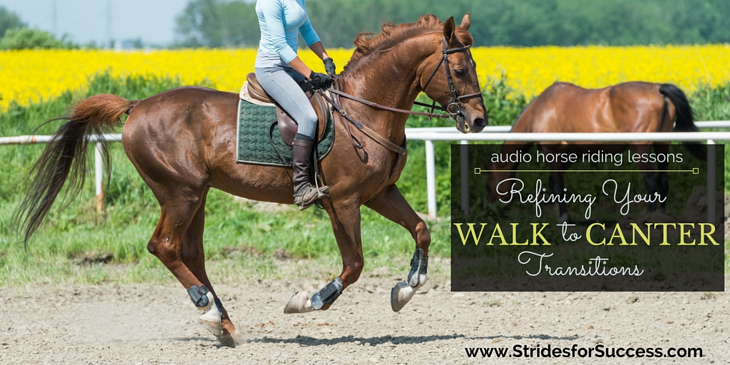 Refining Your Walk to Canter Transitions