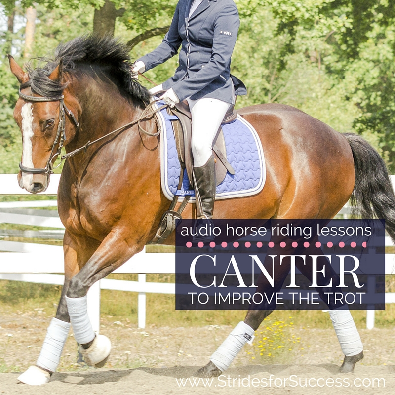 Canter to Improve the Trot