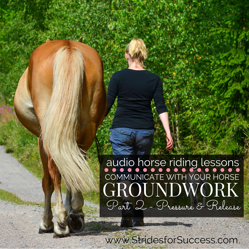 Communicate with Your Horse Through Groundwork – Part 2 Pressure & Release
