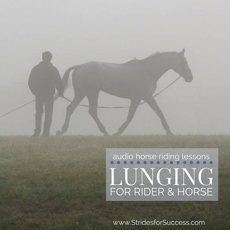 Lunging for You and Your Horse
