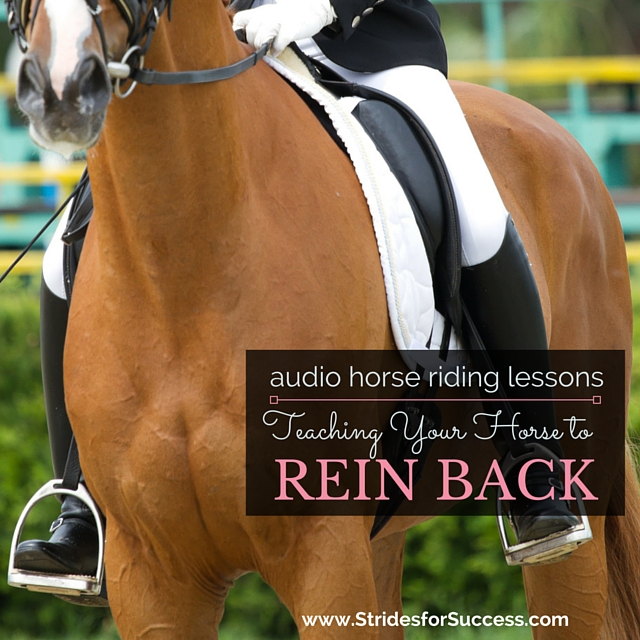 Teaching Your Horse to REin Back Correctly