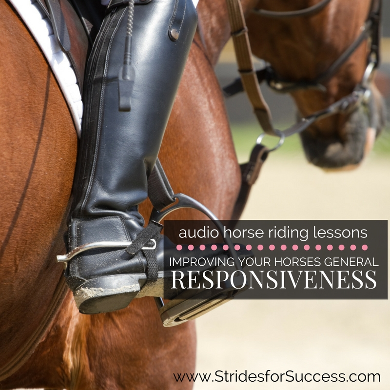 Increasing Your Horses General Responsiveness