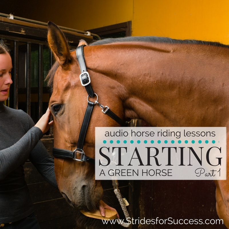 Starting a Green or Young Horse – Part 1