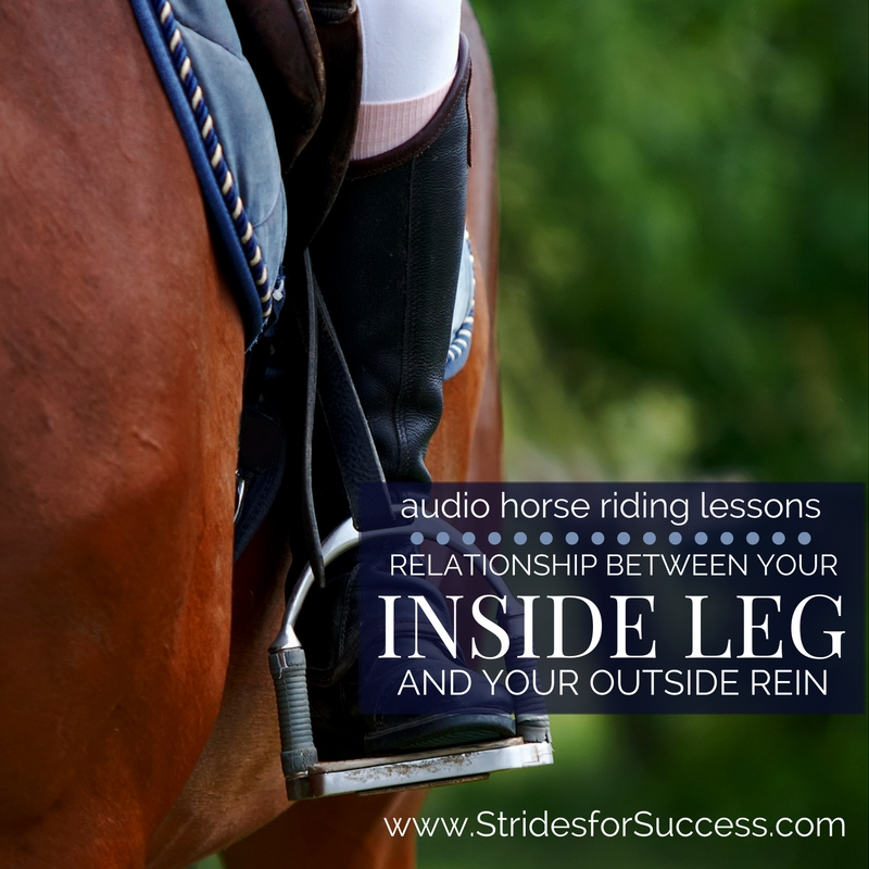Relationship between Your Inside Leg and Outside Rein