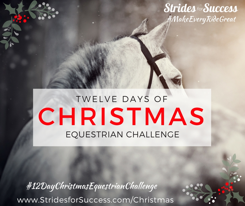 12 Days of Christmas for Equestrians