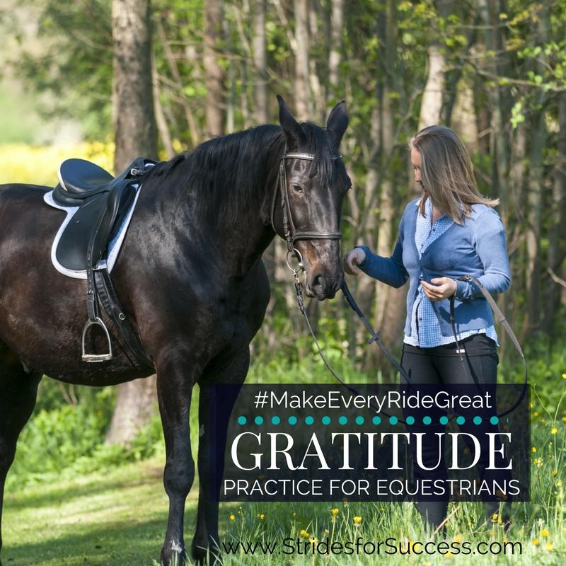 Gratitude Practice for Equestrians