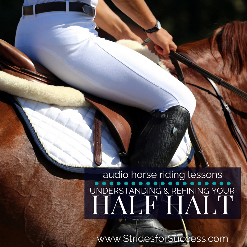 Understanding and Refining Your Half Halt