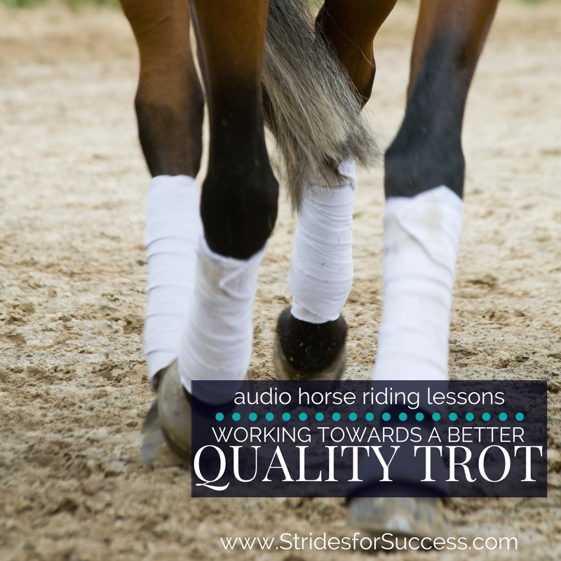 Working Towards a Consistently Better Quality Trot