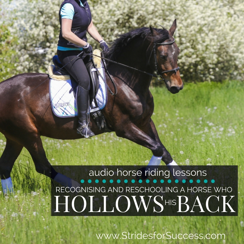 Recognising and Reschooling a Horse who Hollows His Back