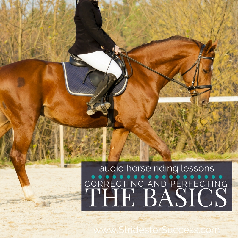 The Importance of Correcting & Perfecting the Basics in Riding