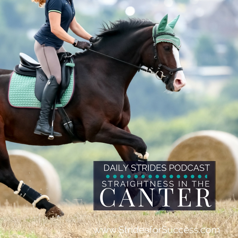 Straightness in the Canter