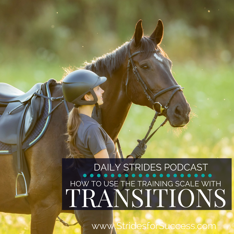 How to use the Training Scale with Transitions